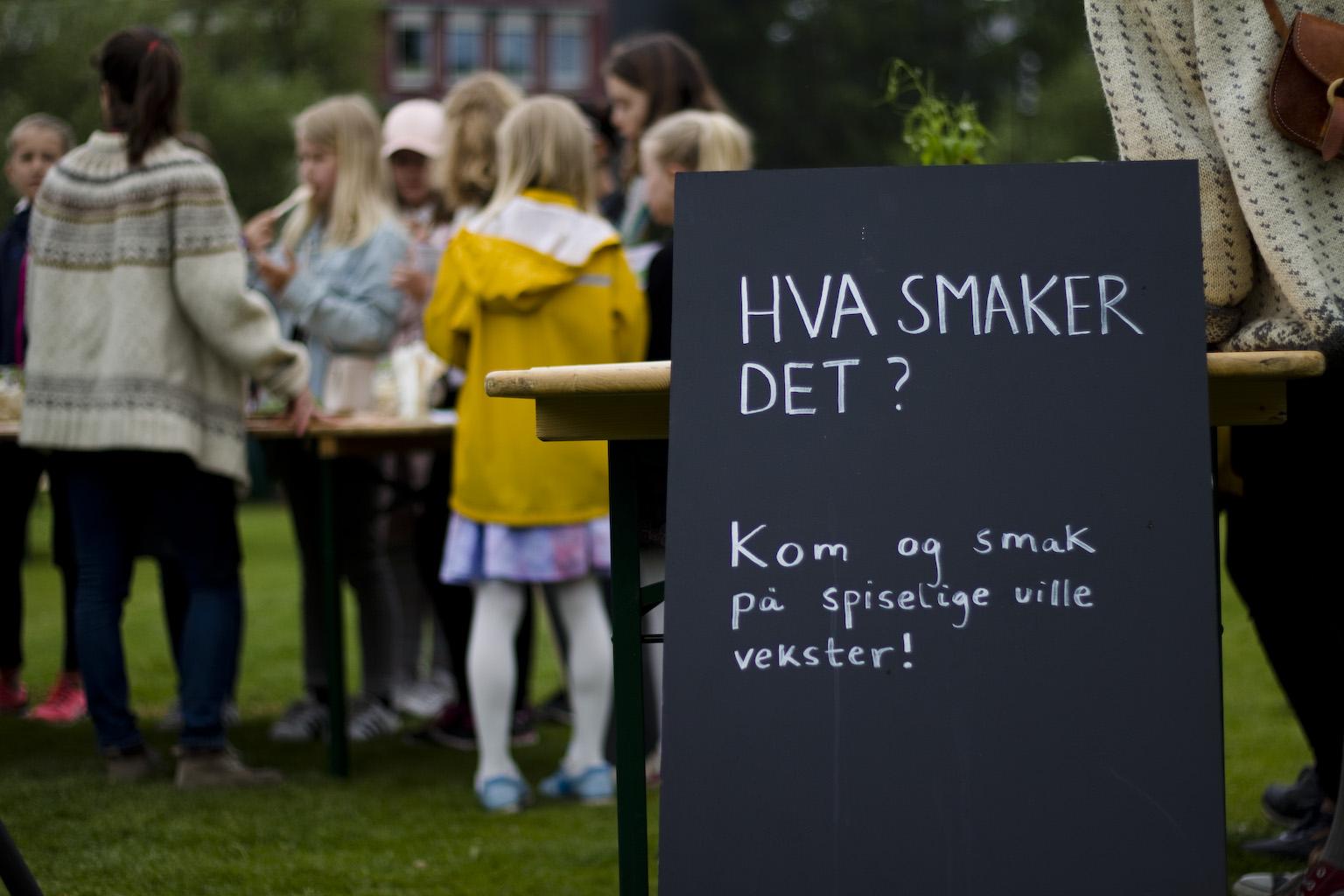 Photo: Anja Bergersen